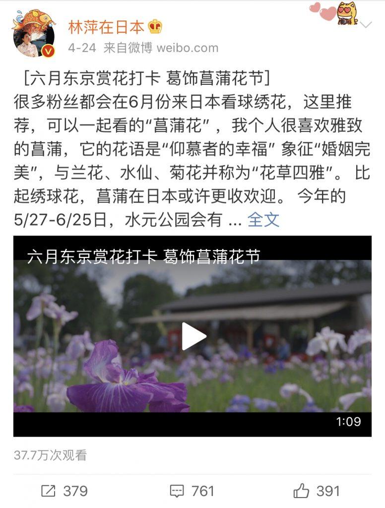 中国人インフルエンサー林萍在日本六月におすすめの観光地紹介として、葛飾区菖蒲園